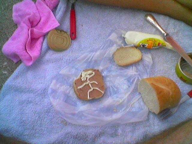 mic dejun in fata cortului