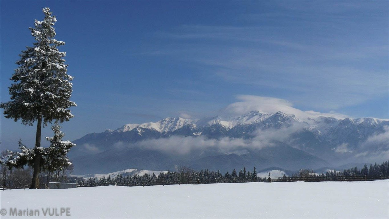 Foto Cheile Gradistei - Fundata - munte, zapada, iarna