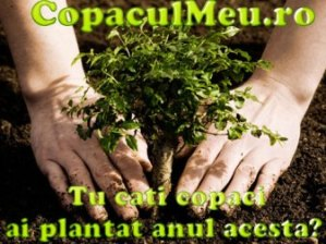 Banner Copaculmeu.ro